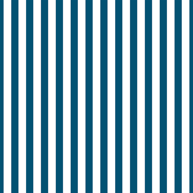 MUSE Wall Studio Blue and White Stripes
