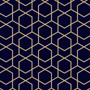 MUSE Wall Studio Navy and Gold Hexagon