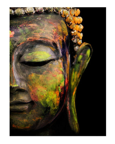 Lord Buddha Colourful Canvas Paintings