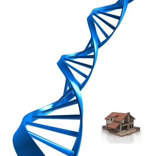 Store your DNA at Home