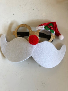 Santa - Holiday Eyeglasses