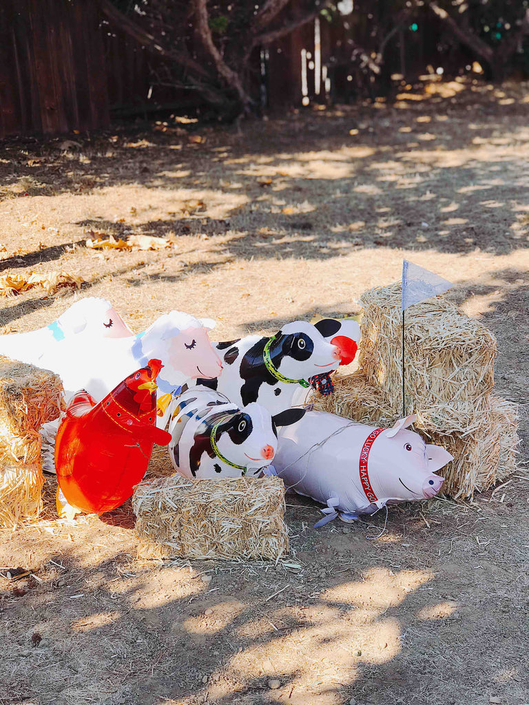Kids Farm Birthday Party Activity Ideas Walking Farm Animal Balloons