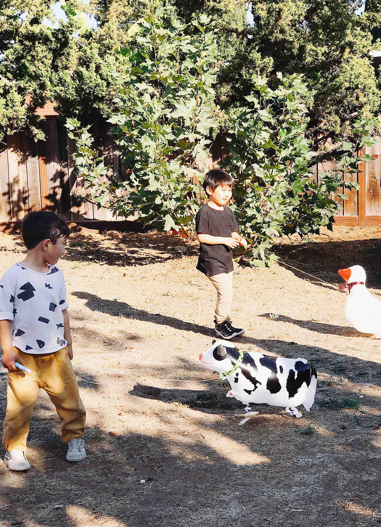 Kids Farm Birthday Party Activity Ideas - Farm Animal Walking Balloons
