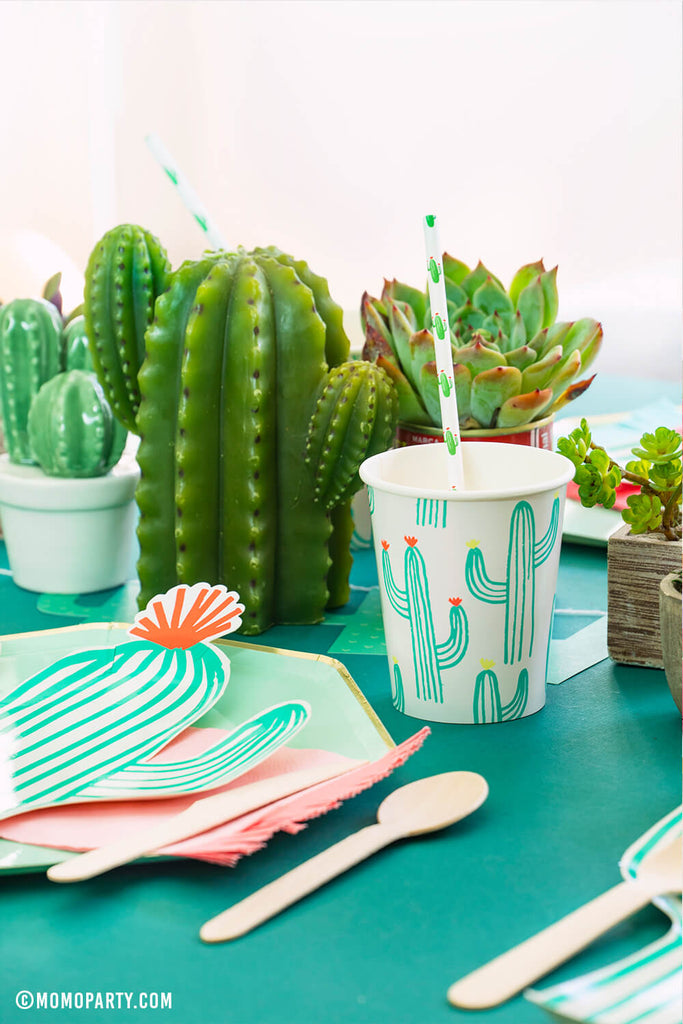 Cactus Themed Party in Summer by Momo Party