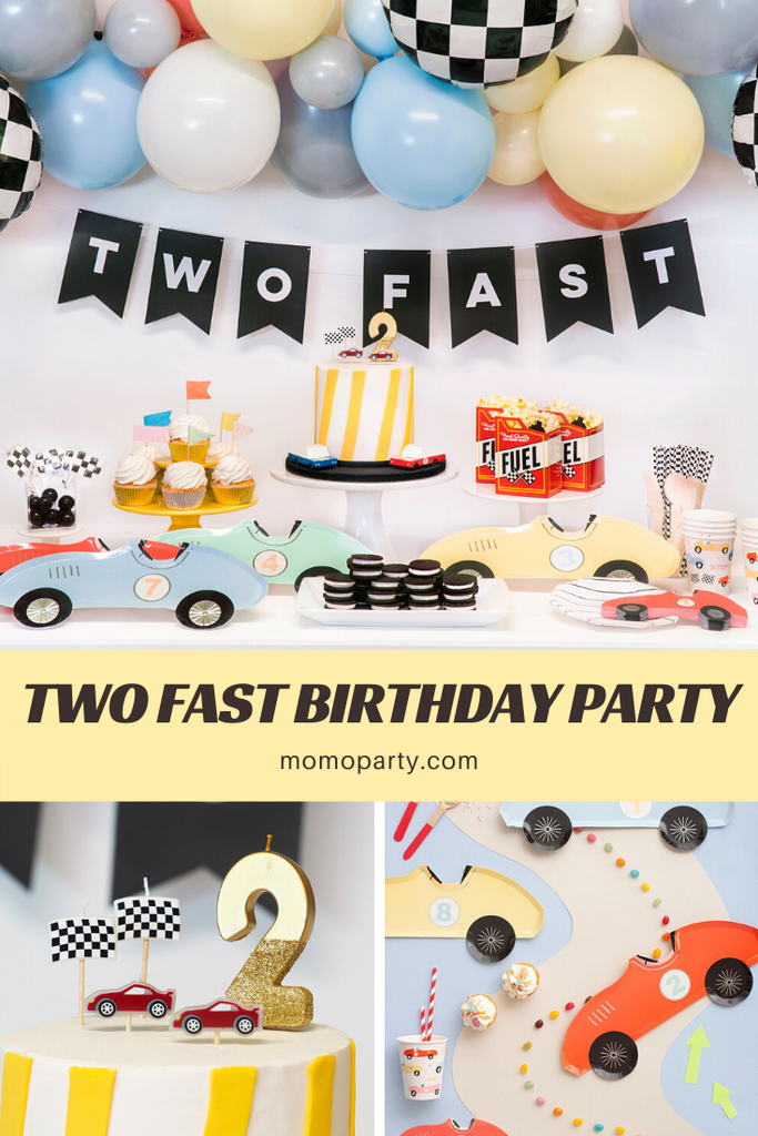 Two Fast 2nd Birthday Party Ideas by Momo Party