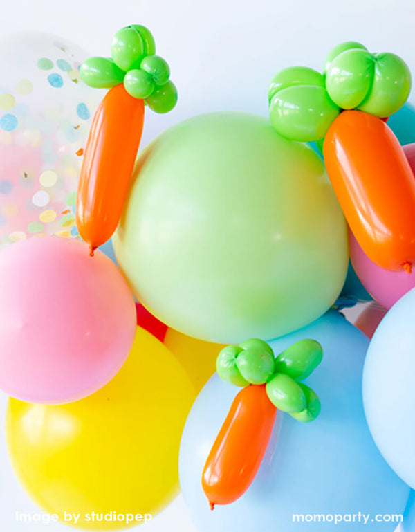 Carrot Balloon Animal Kit