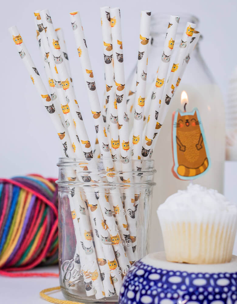 Party Partners Cute Kitten Party Paper Straws for a Cat themed Celebration with cupcakes and birthday candle with cat design