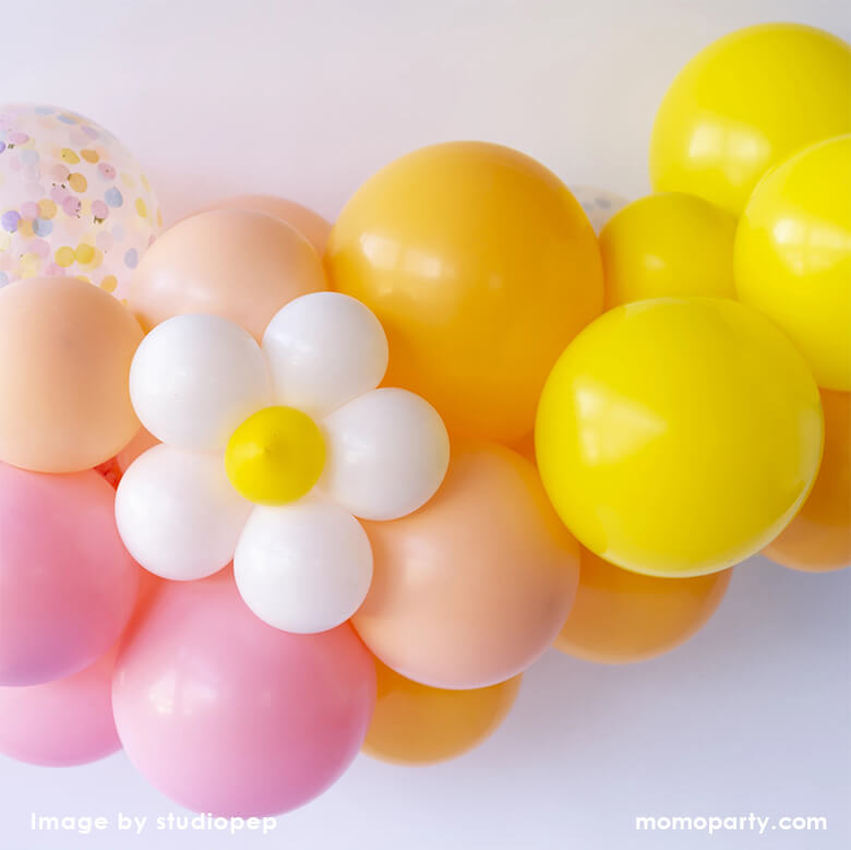 Daisy Balloon Animal Kit