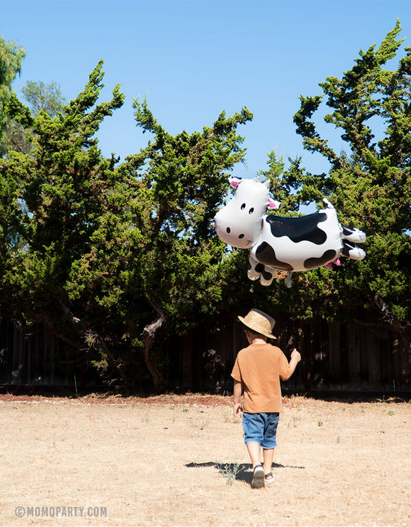 "boy holding a 30"" large unique shape cow foil mylar balloon walking on the yard"