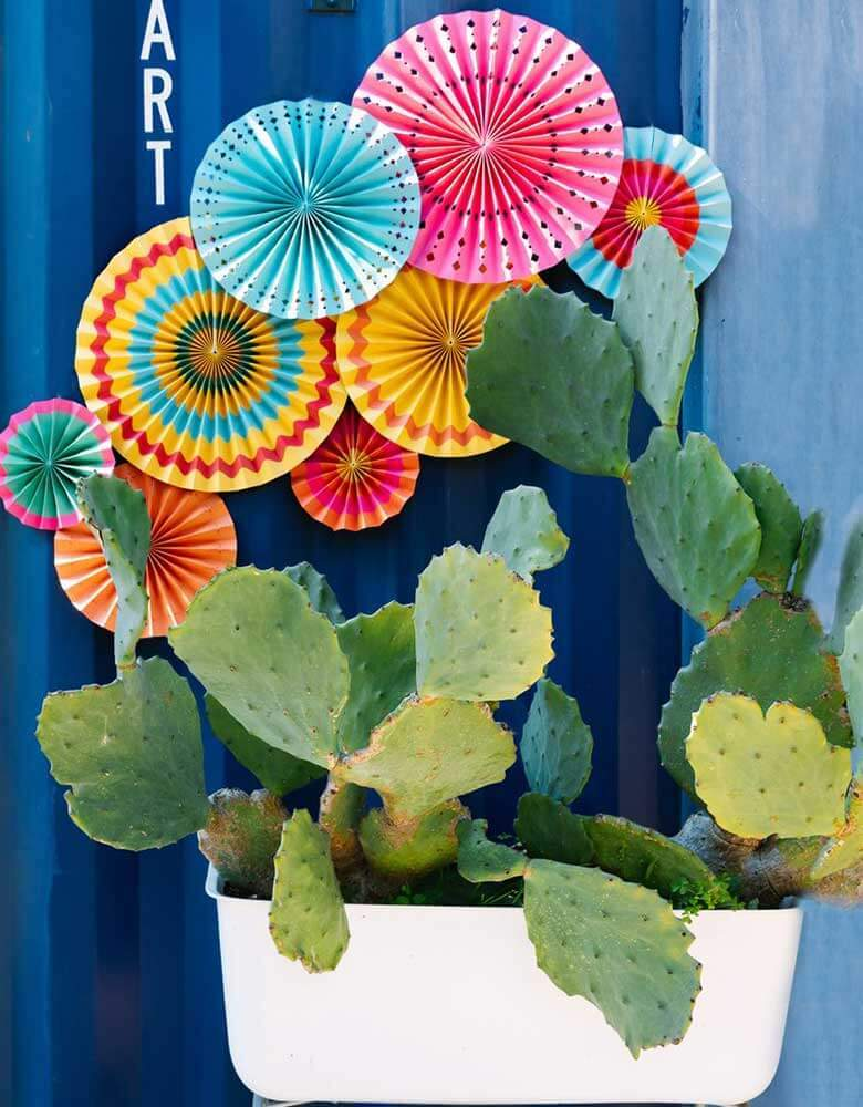 My Minds Eye Fiesta Paper Fans on top of a cactus platter