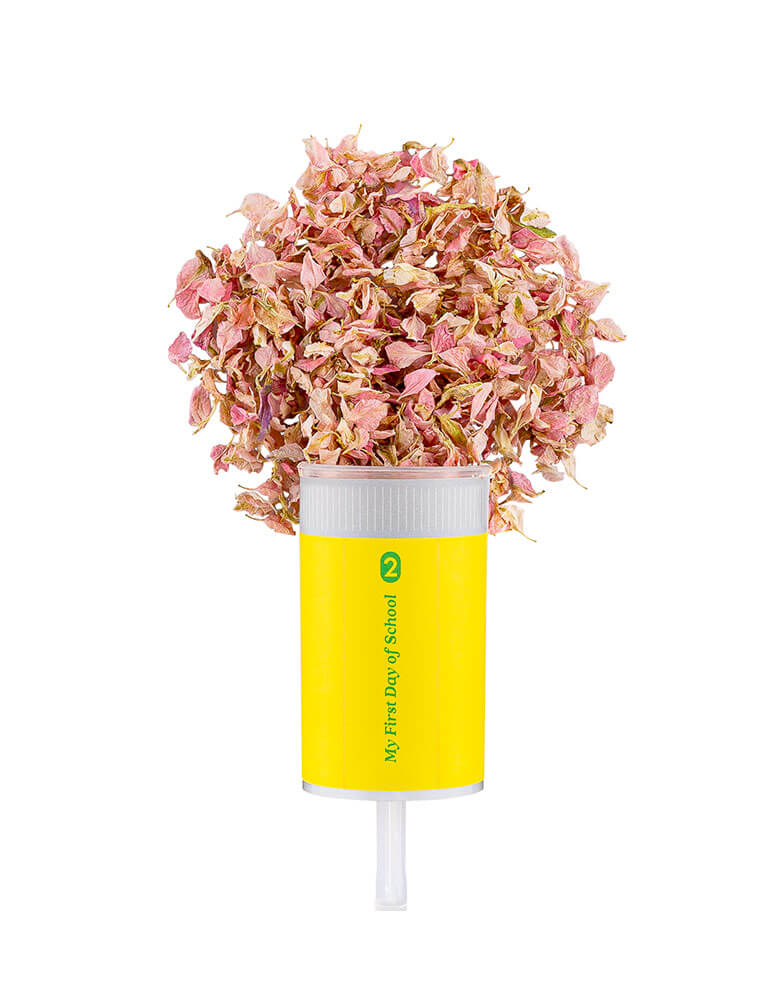 Studiopep first day of school pencil confetti popper with Light pink delphiniums petals