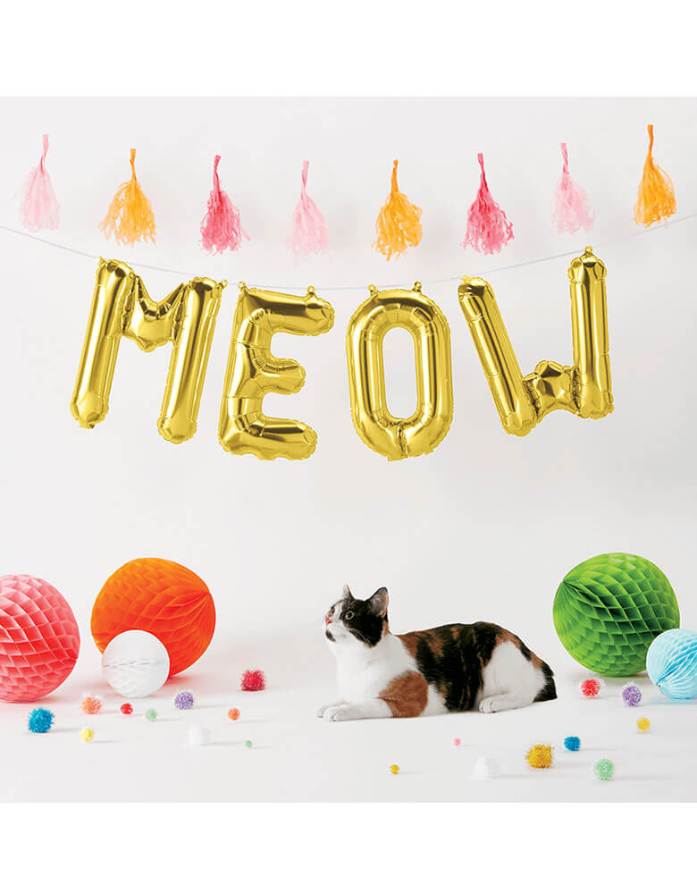 "A cat in a cat-themed party with Northstar 16"" MEOW Gold Mylar Balloons spelled out in the backdrop along with festive tassels and decorations"