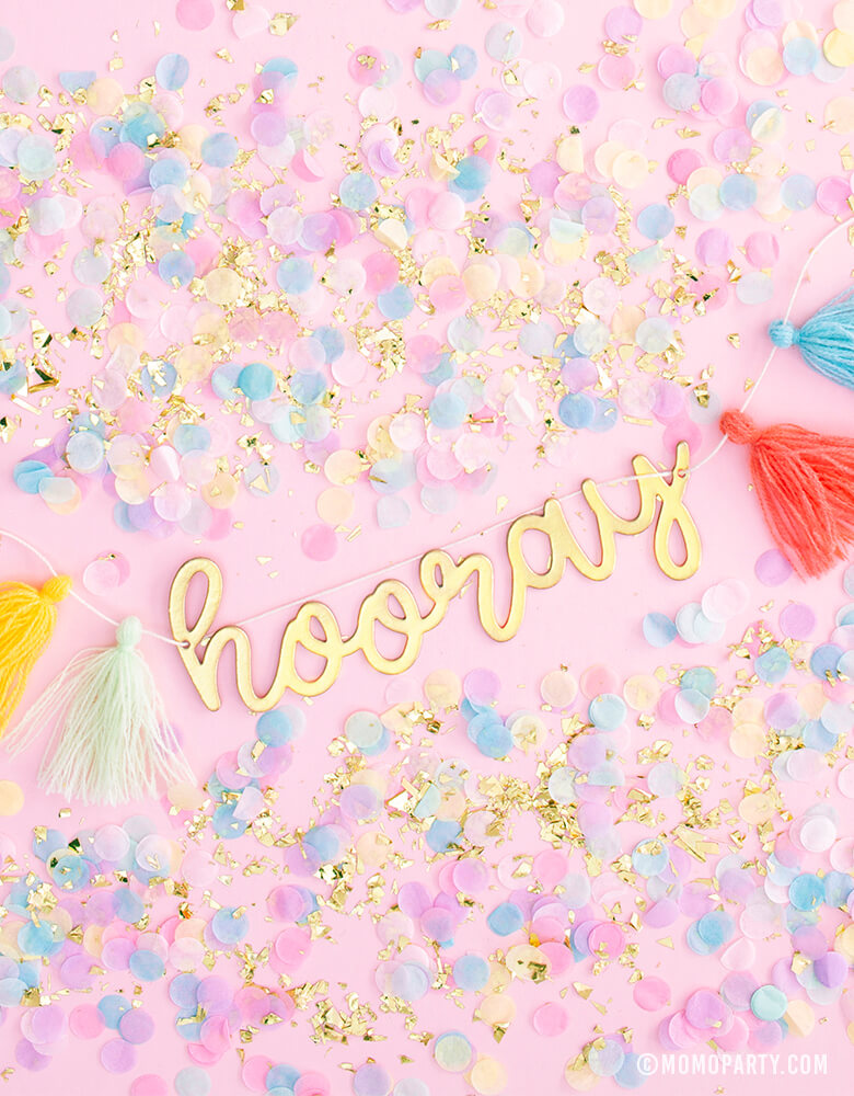 MyMindsEye_Hip Hip Hooray Mini Banner Garland with colorful tassels and confetti
