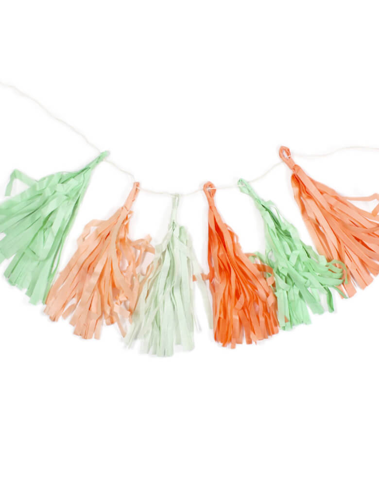 "My Mind's Eye Trend Tassel Banner. This tassel banner kit includes 12 pre-strung, pre-made 10"" tassels, in green, mint and coral colors. Modern party decoration for Fiesta themed birthday party, Kids' Tea party, Spring Garden party, Tropical Party, Baby shower, Wedding celebration and all kinds of party in pastel mint and peach colors."