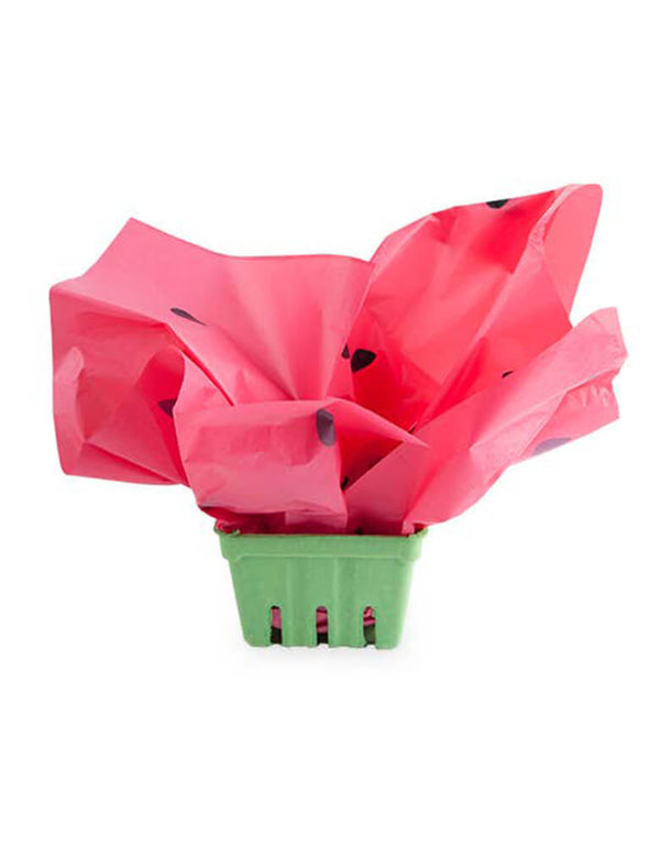 "True Brands Cakewalk Watermelon Berry Basket for ""One in a melon"" First birthday party"