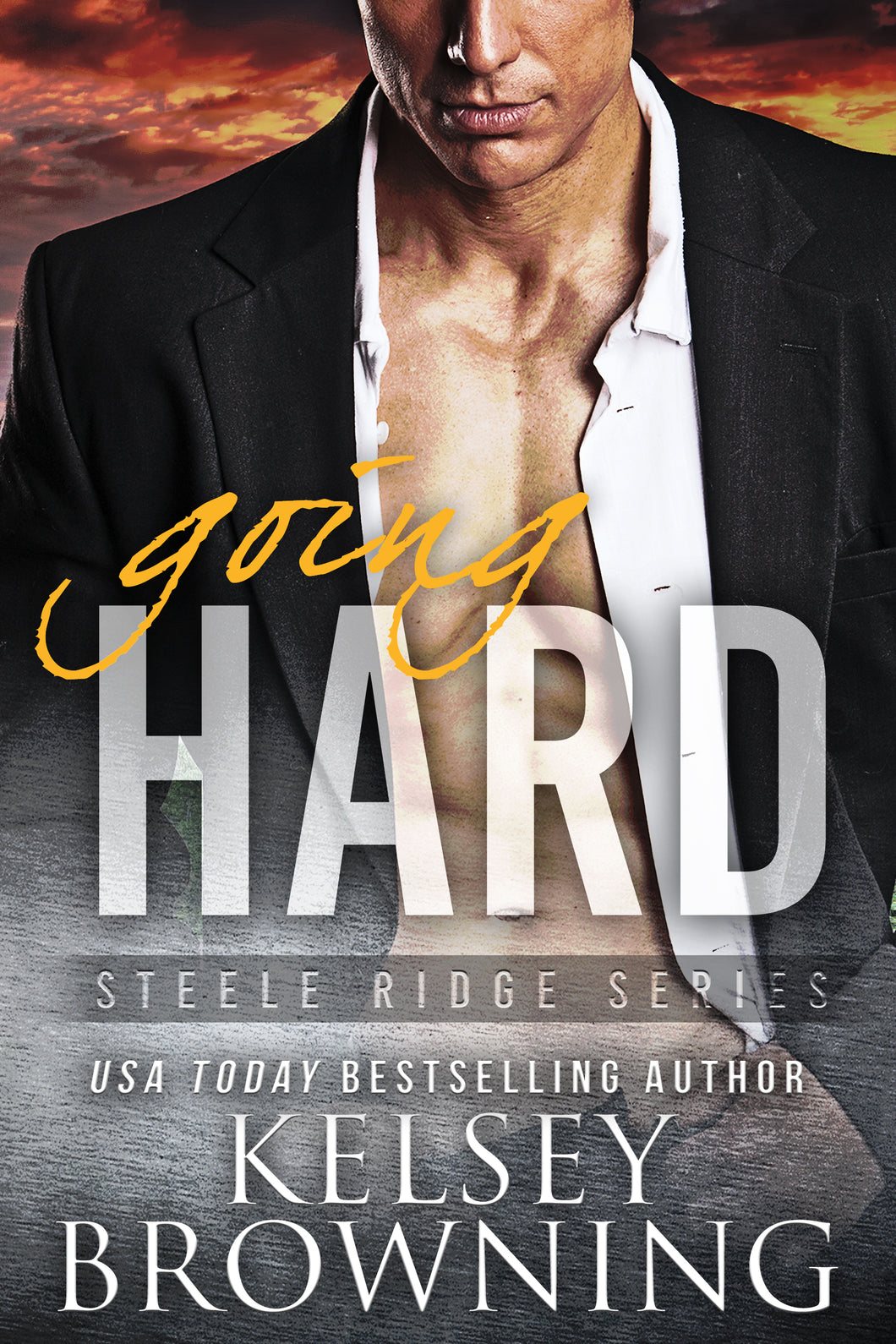 Going HARD (The Steeles), Romantic Suspense, Book 2, Ebook