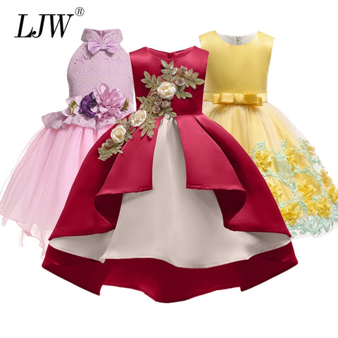 Lovely Girl Embroidery Princess Dresses