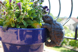 Tortoise 'Pot Pal'