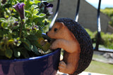 Hedgehog 'Pot Pal'