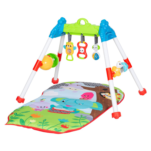 Jammin' Gym with Play Mat  by Smart Steps™