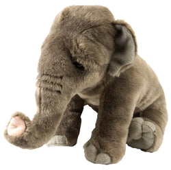 Asian Elephant Stuffed Animal - 12""
