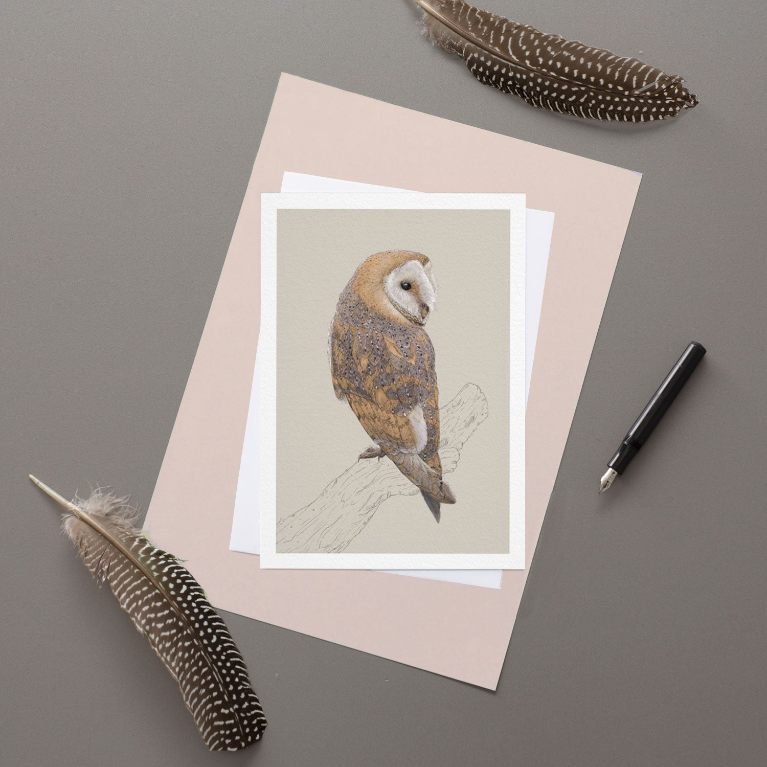 Barn Owl - Greeting Card