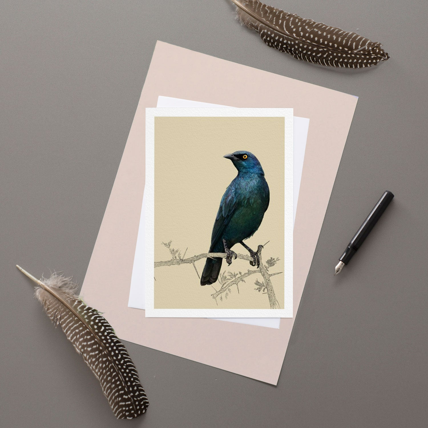Cape Glossy Starling - Greeting Card