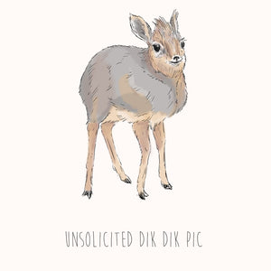 Unsolicited Dik Dik Pic