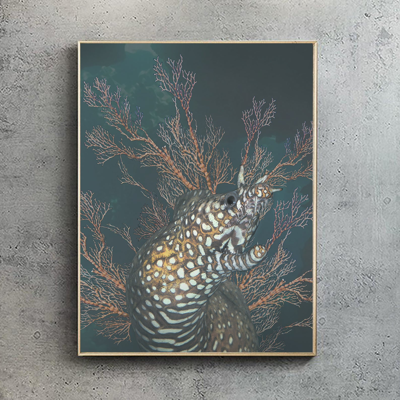 Dragon Moray (Artists proof)