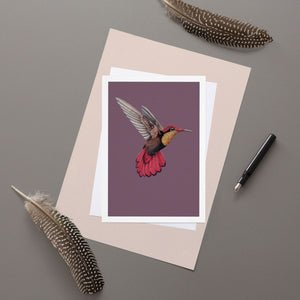 Hummingbird - Greeting Card