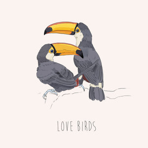 Lovebirds – Toucans
