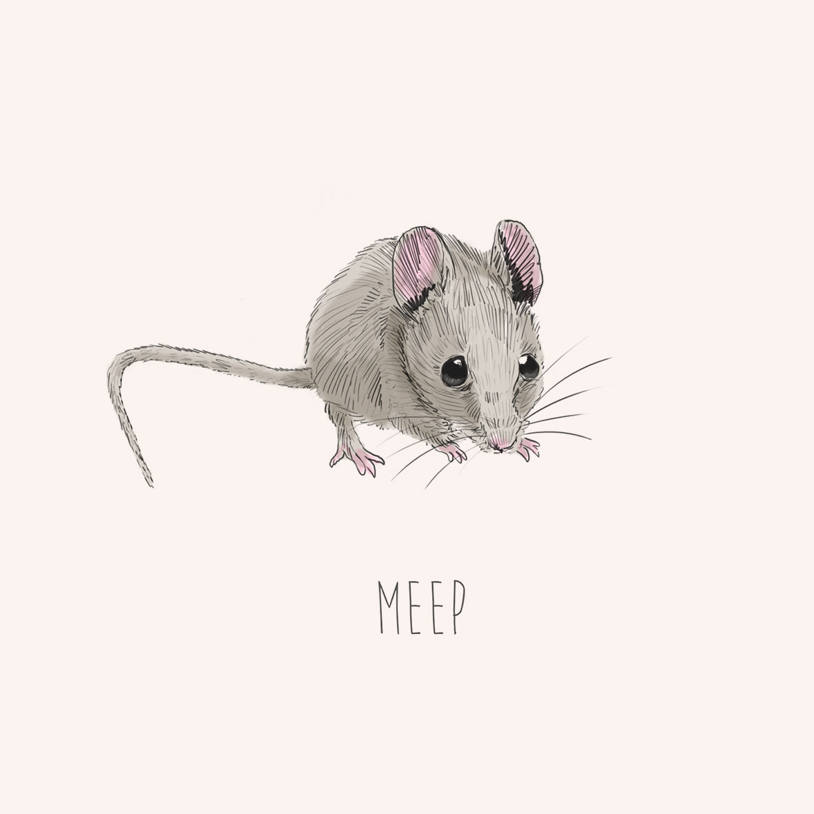 Meep – Mouse