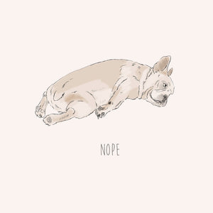 Nope – French Bulldog