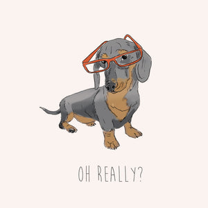 Oh Really – Daschund