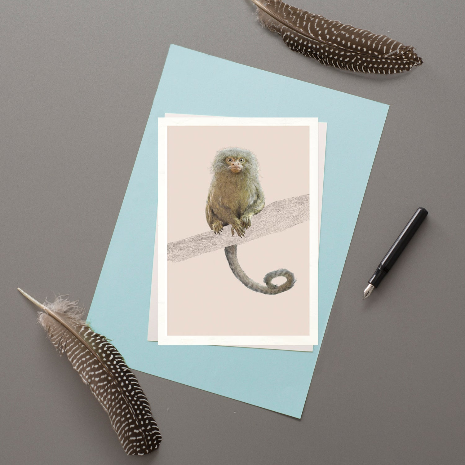 Pygmy Marmoset  - Greeting card