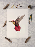Ruby Topaz Hummingbird 2