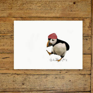 Puffin with red hat A3