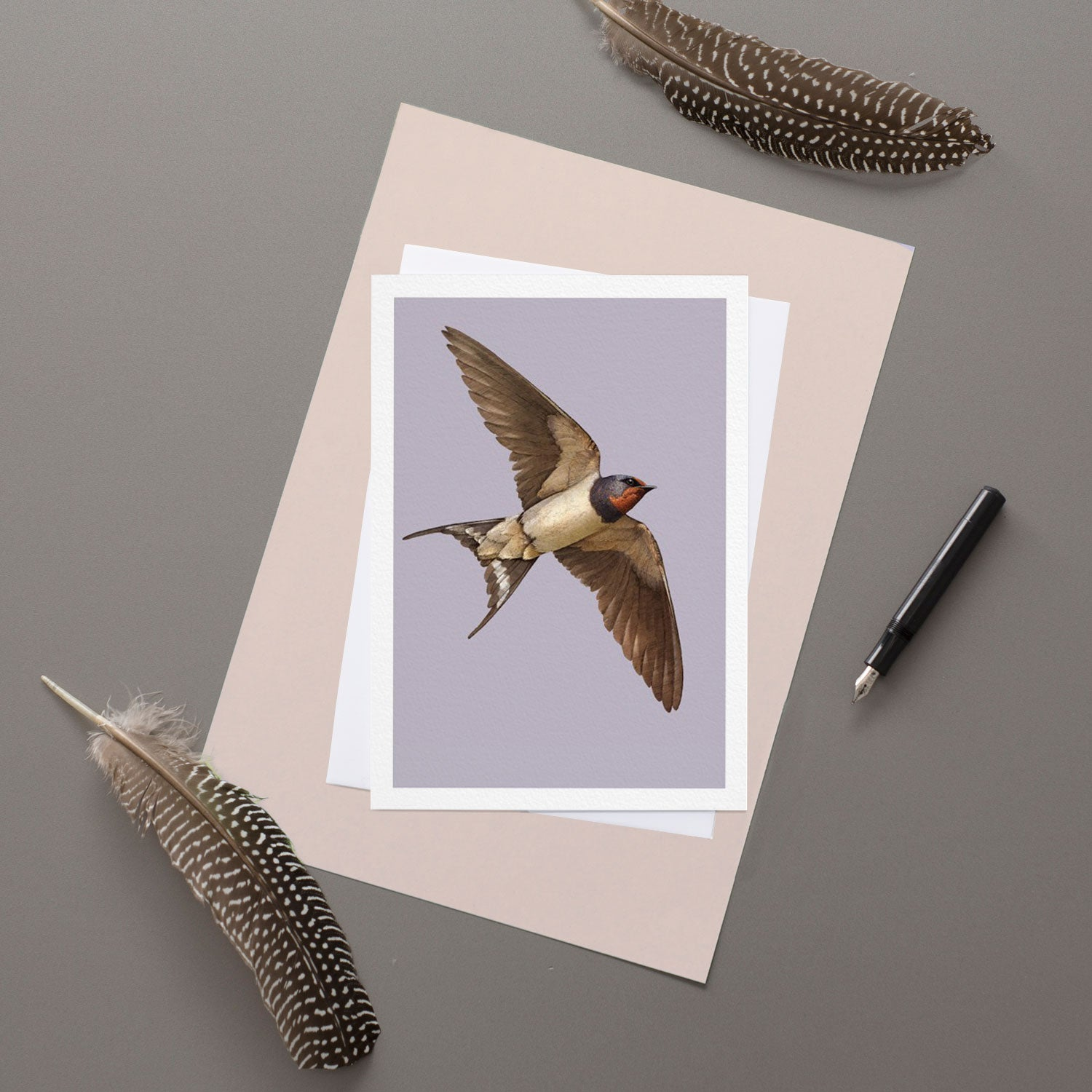 Swallow - Greeting Card