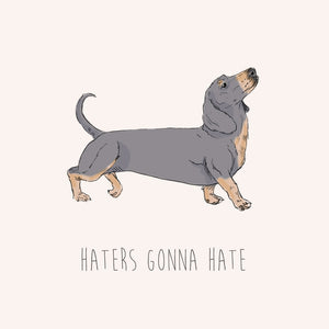 Haters Gonna Hate – Daschund