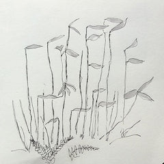 Chestnut coppice shoots pen sketch artist mandy covington