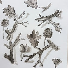 Ink drawing of oak twigs and leaf by artist mandy covington