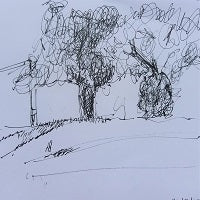 pen sketch of trees in high woods lane tunbridge wells by artist mandy covington