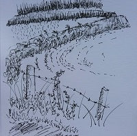 fineliner pen sketch of hedges and fields on high woods lane by artist mandy covington