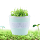 Creative Mini USB Office Potted Plant Humidifier