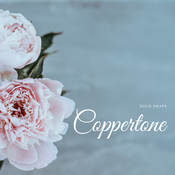 Coppertone Solo Scent