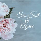 Sea Salt & Agave Solo Scent