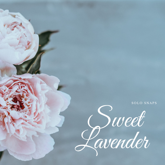 Sweet Lavender Solo Scents