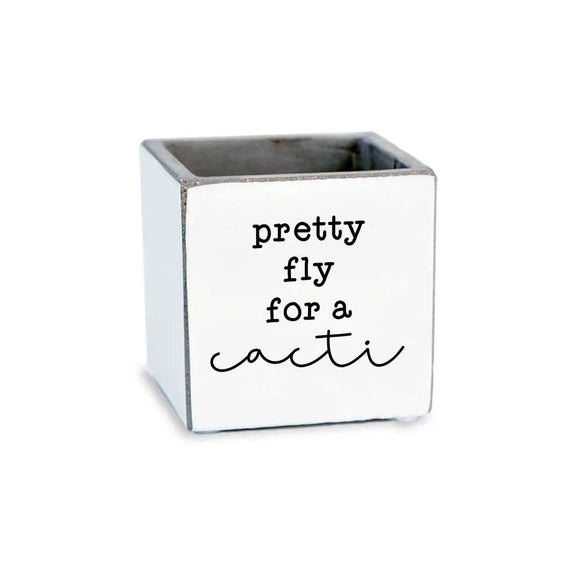 Pretty Fly for a Cacti Succulent Pot