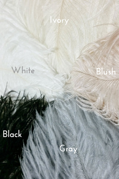 Danani | Feather Color Options