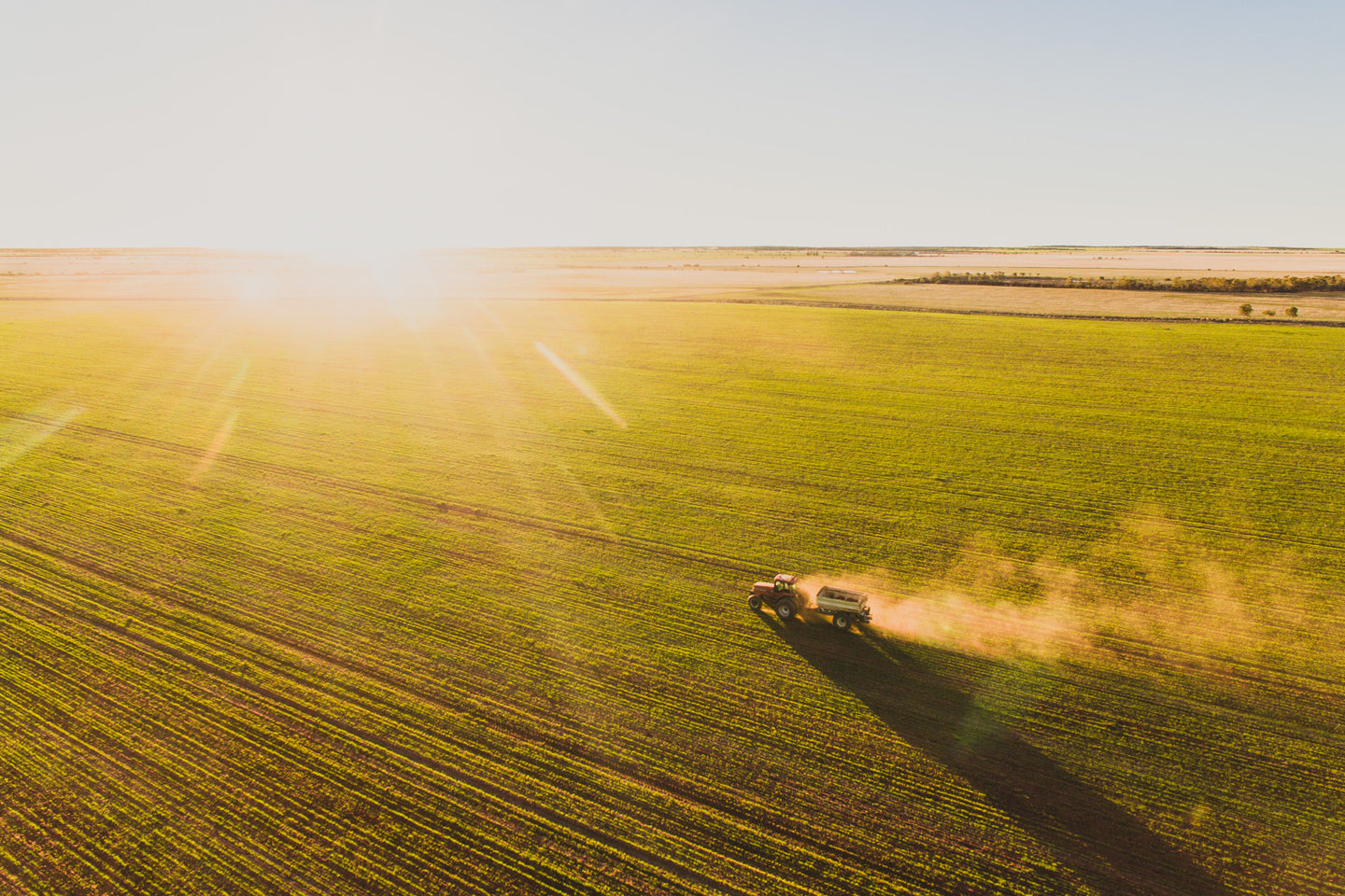 Tractor spreading urea across a paddock at golden hour